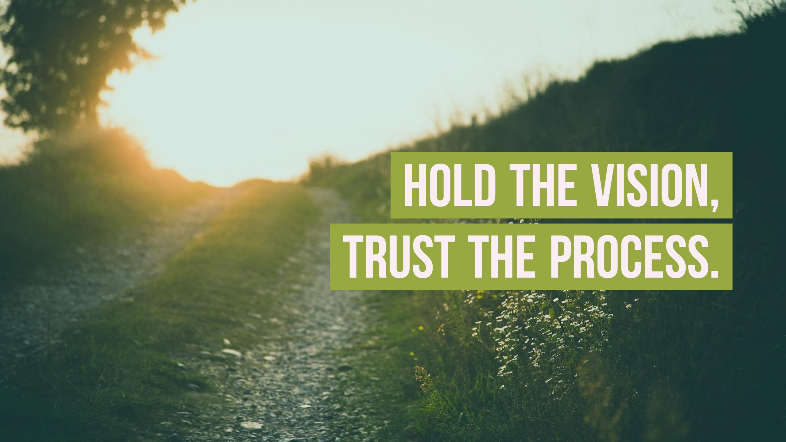 Hold The Vision, Trust The Process